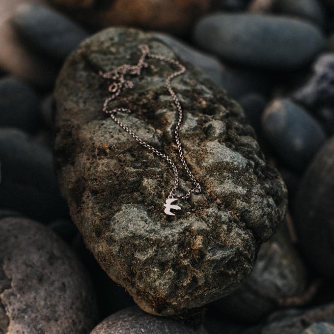 Серебряная цепочка с беркутом